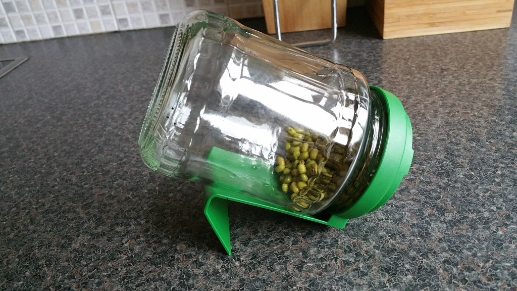 remove-water-from-germinator-jar
